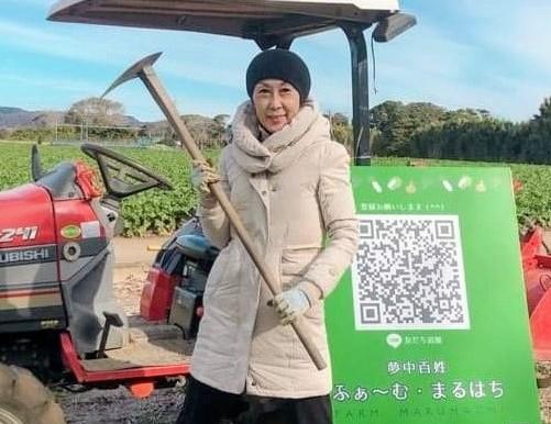 菊芋掘り体験