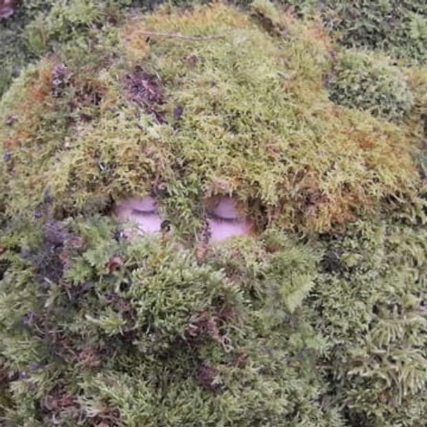 Mossy Coat