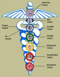 The History of Kundalini