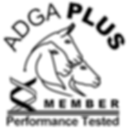 adga-plus-members-only-logo-web-transpar