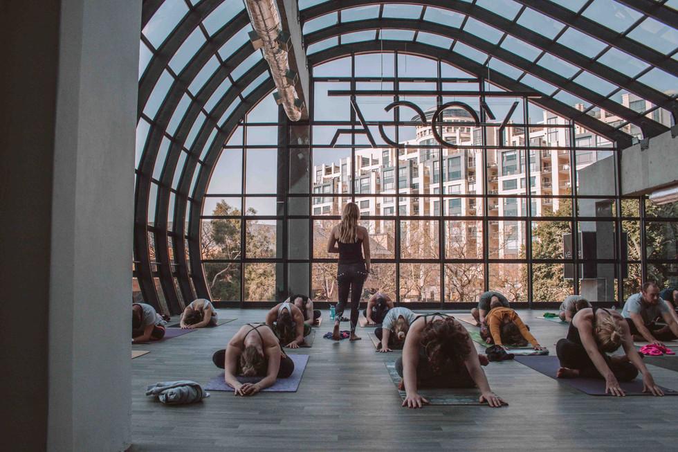 Everybody Love Everybody Yoga Day