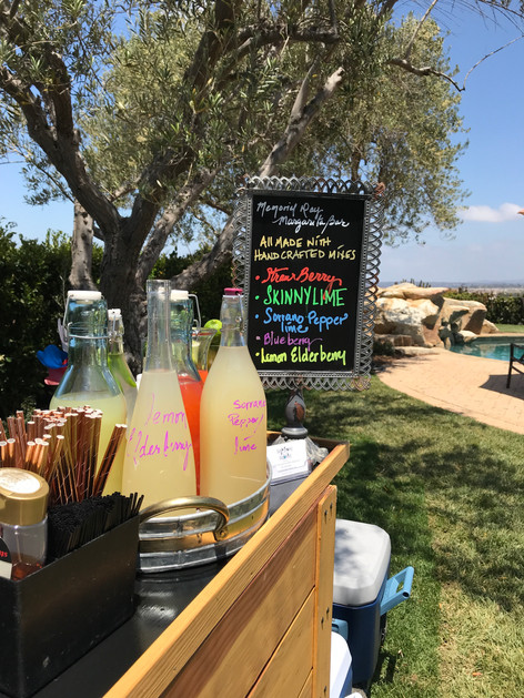 Memorial Day Margarita Bar