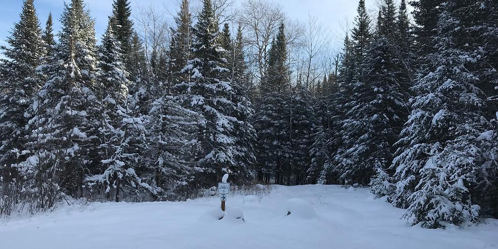 Family Snowshoe Adventure
