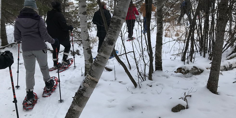 Boreal Adventure Snowshoe