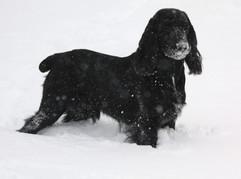 MNA & Snow day 039.JPG