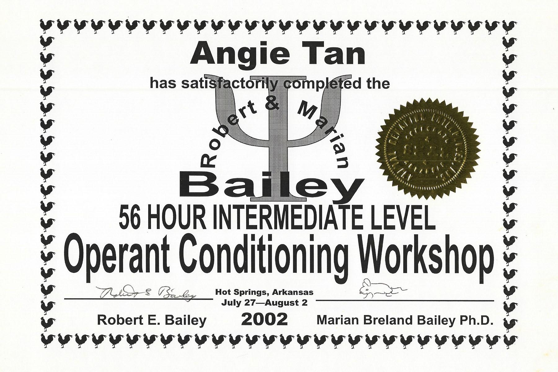 Bailey 2 Intermediate
