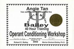 Bailey 4 Training