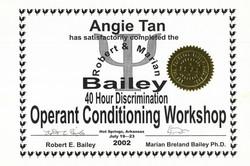 Bailey 1 Discrimination