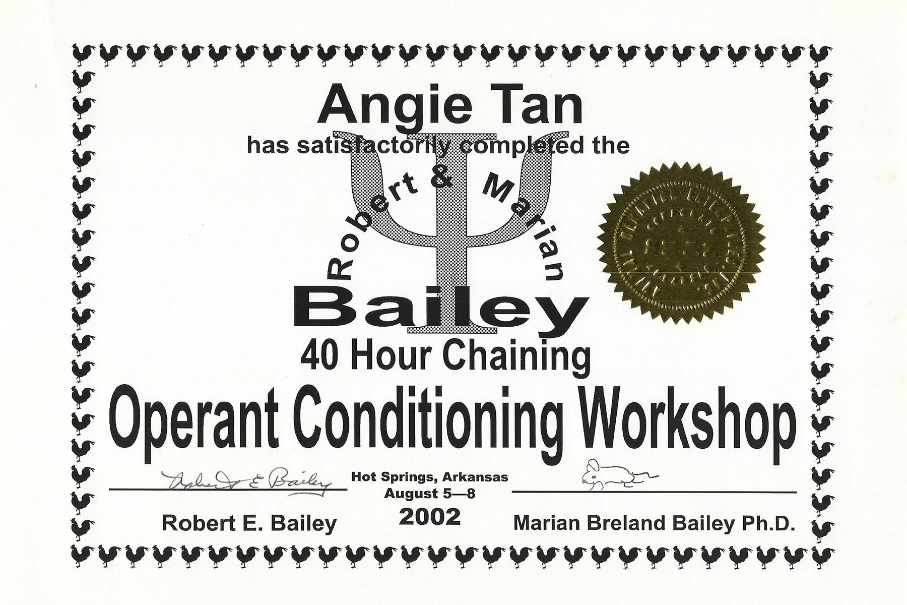 Bailey 3 Chaining