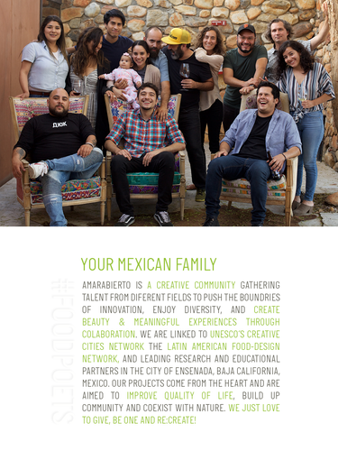 Your Mexican Family