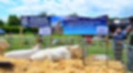 Farm to Plate080_edited.jpg