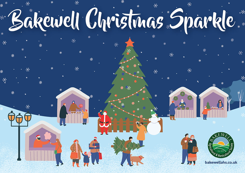 BAHS Christmas Sparkle web image.jpg