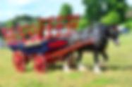 Farm to Plate128.jpg