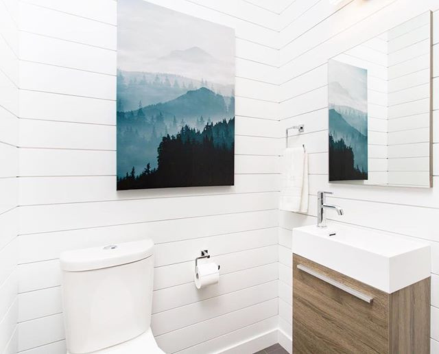 Shiplap is a great product for transform