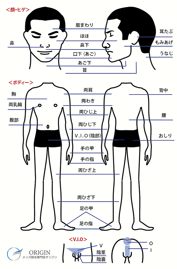 譁咎≡陦ィ-05.png