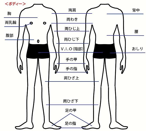譁咎≡陦ィ-03.png
