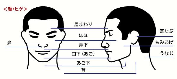 譁咎≡陦ィ-02.png