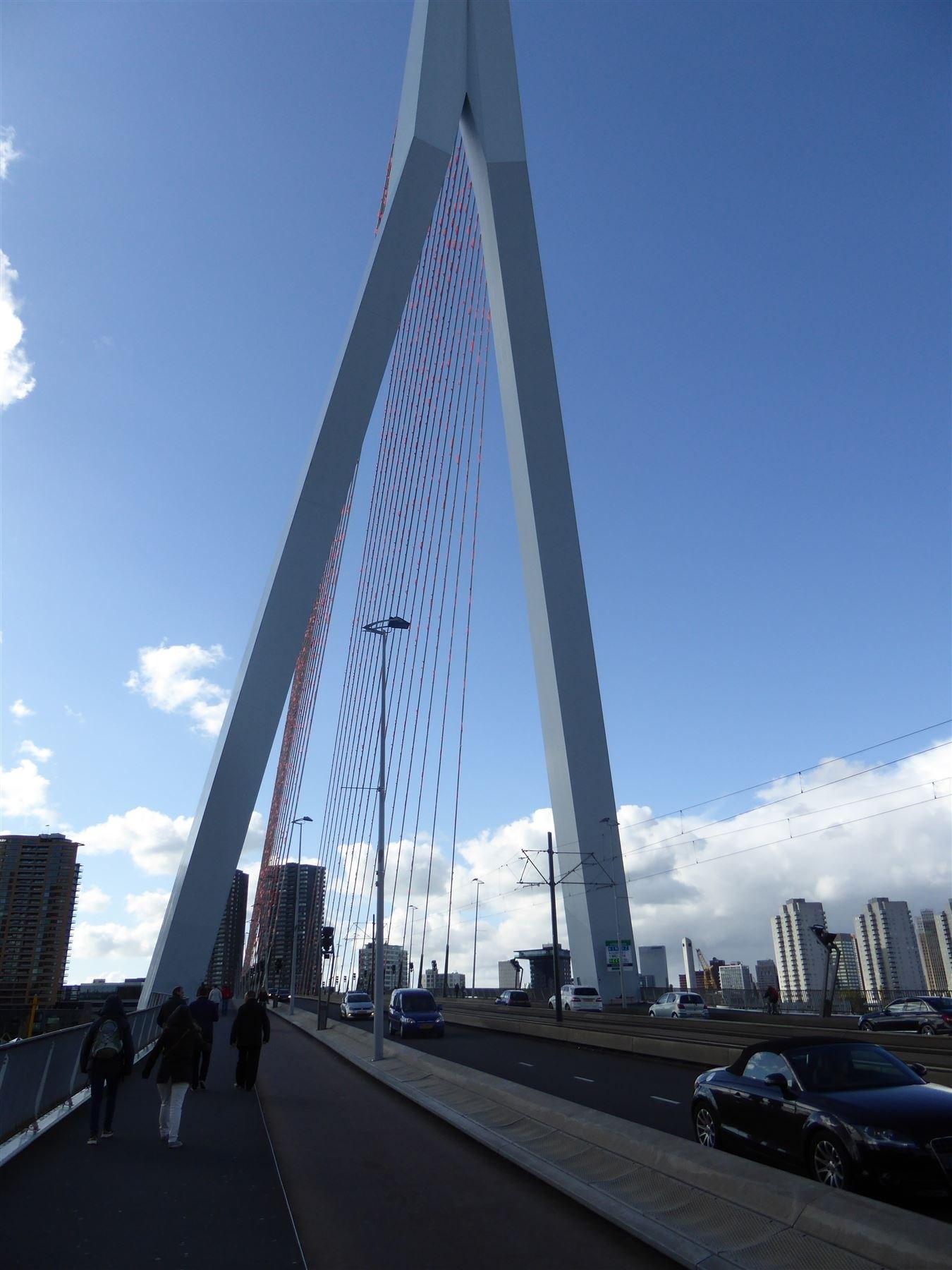 Uitstap Rotterdam