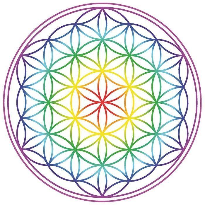 Fleur de vie multicolor Imprimée haute