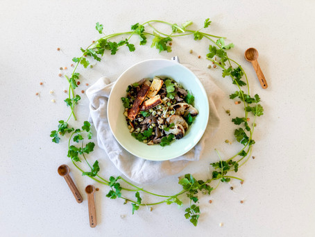 Haloumi and lentil sprouts with coriander toppings
