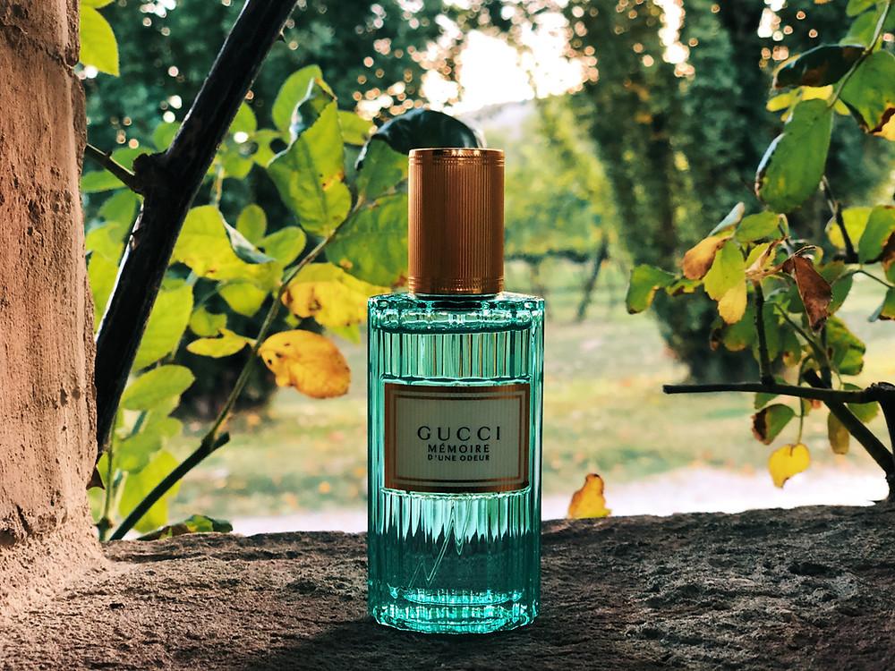Gucci Mémoire d'une Odeur by Mr Neo Luxe review