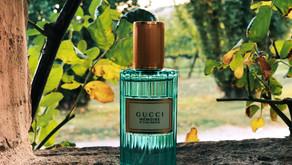 Review: Gucci Mémoire d'une Odeur