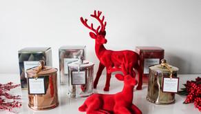 A Glasshouse Christmas has Arrived