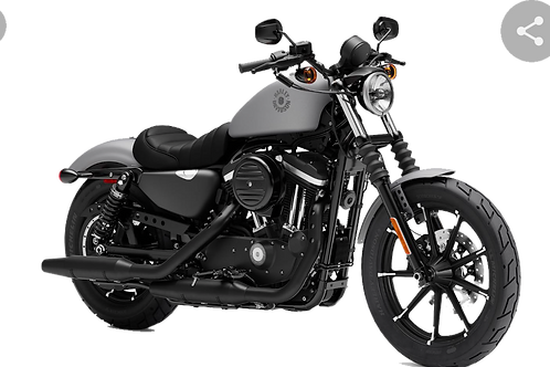 Ballot(s) ONLY for Harley Davidson 2021 Iron 883