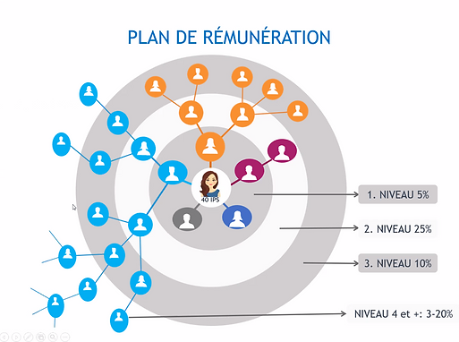 Plan_de_rémunération_.png