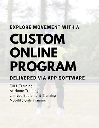 Custom Online Training.jpg