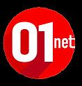 Logo 01 net