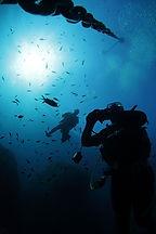 187 Diving a nord di Isola Molara.jpg