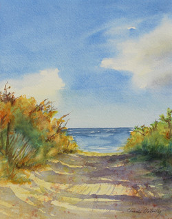 Henlopen Beach Walk 2