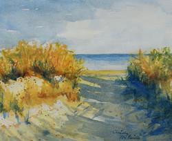 Henlopen Beach Walk 1
