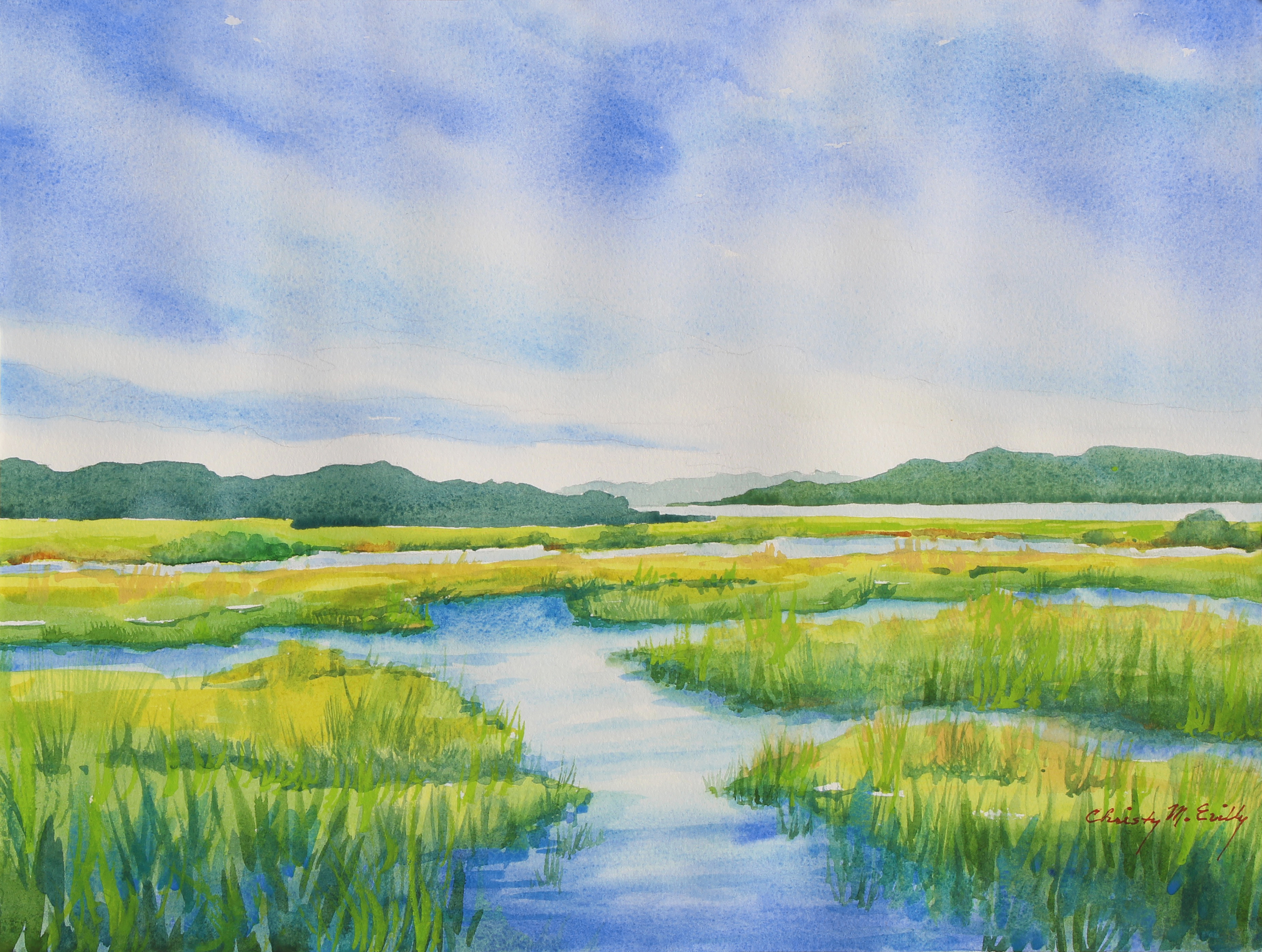 Gordon Pond Marsh