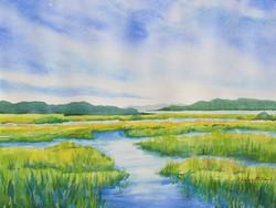 Gordon Pond Marsh