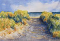 Henlopen Beach Walk 3