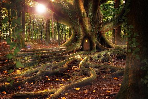 treehouse-1308108_1920.jpg