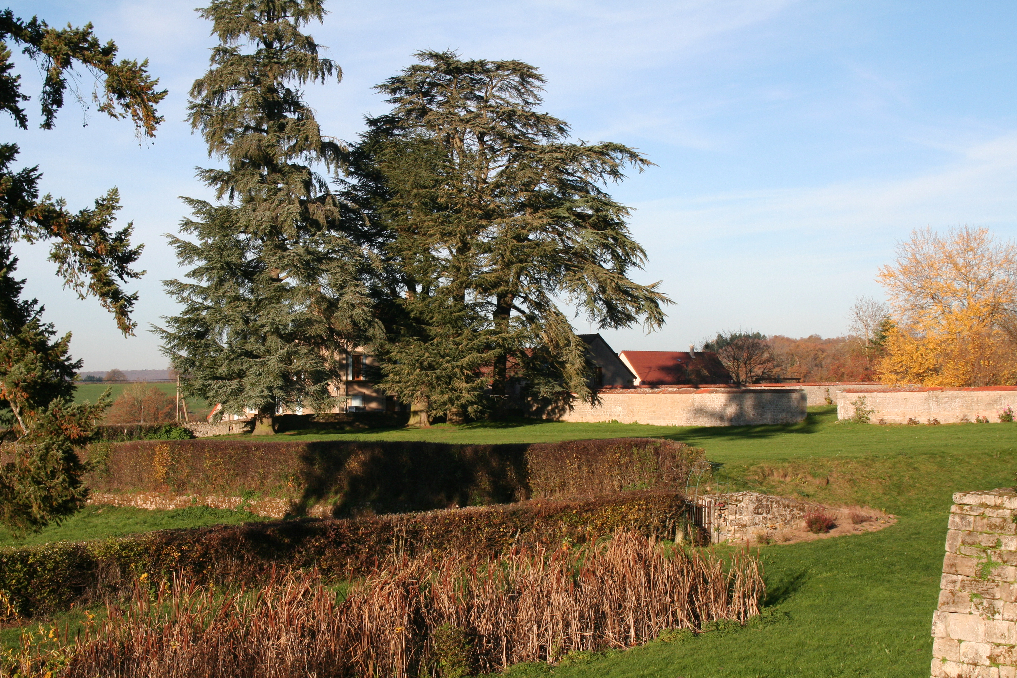 Ancien étang Château Morlet