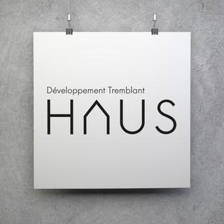 Développement Tremblant Haus