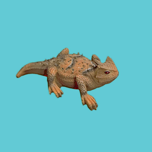"Texas Horned Toad Figurine 3"""