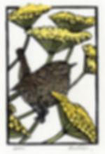 Wren in tansy linocut