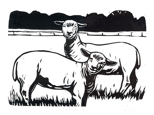 Summer Lambs