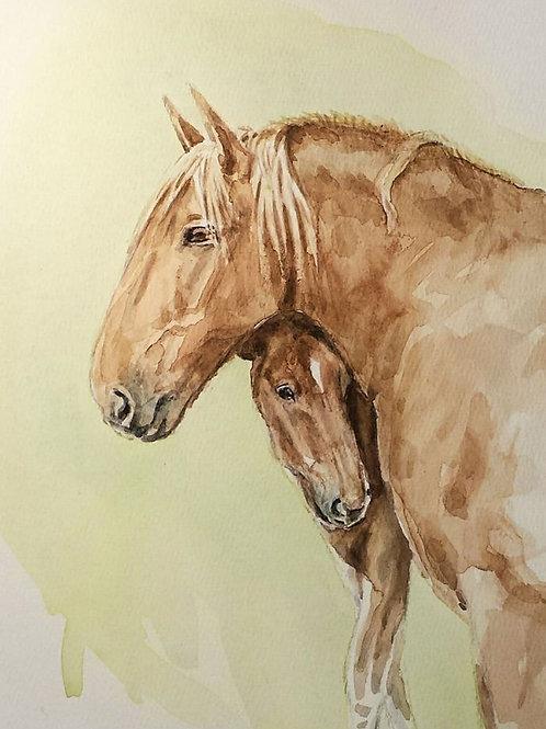 Suffolk Punch Mare & Foal