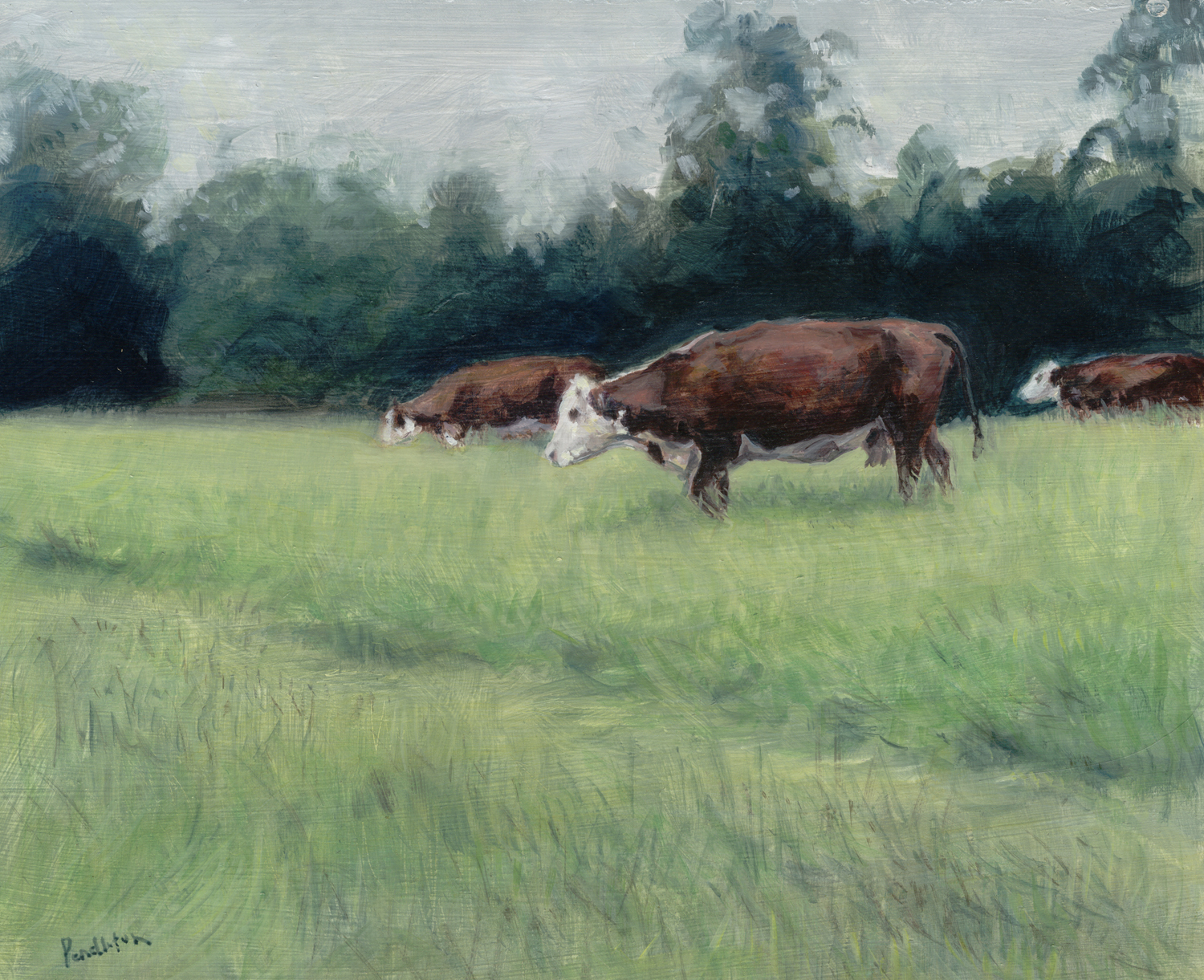 Herefords2-copy
