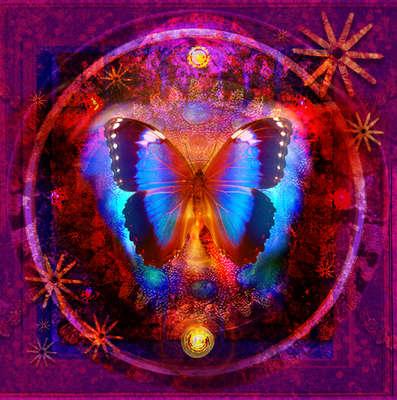 612559_purple-jewel