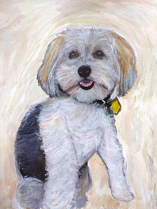 Spike Dog Portrait