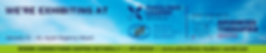small banner.png