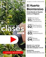 Ciclo de Clases Online - Afiche sin fech