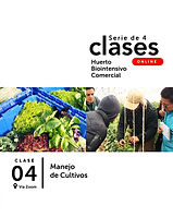 Post - Curso Online 2 - Clase 4.jpg